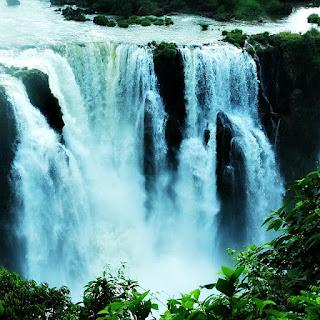 Cataratas do Iguaçu, Parque Nacional do Iguaçu. Pequena quantidade de vegetação em primeiro plano. E volumosa queda d'água, no segundo plano.