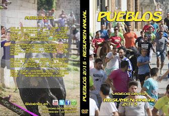 DVD  VIDIOS DIVISA RESUMEN ANUAL 2015