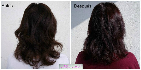 resultados perfect gloss schwarzkopf