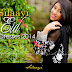 Silaayi Exclusive Eid Dresses 2014 | Embroidered Festive Dresses For Women
