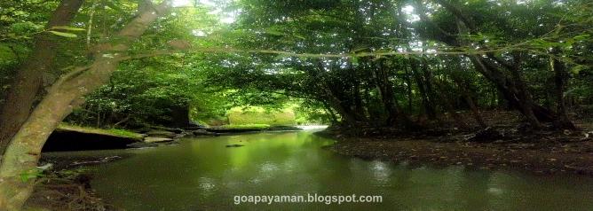 Goa Payaman