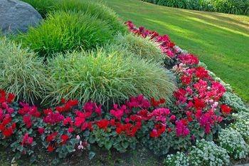 flower garden of 2015 easy flower gardening ideas