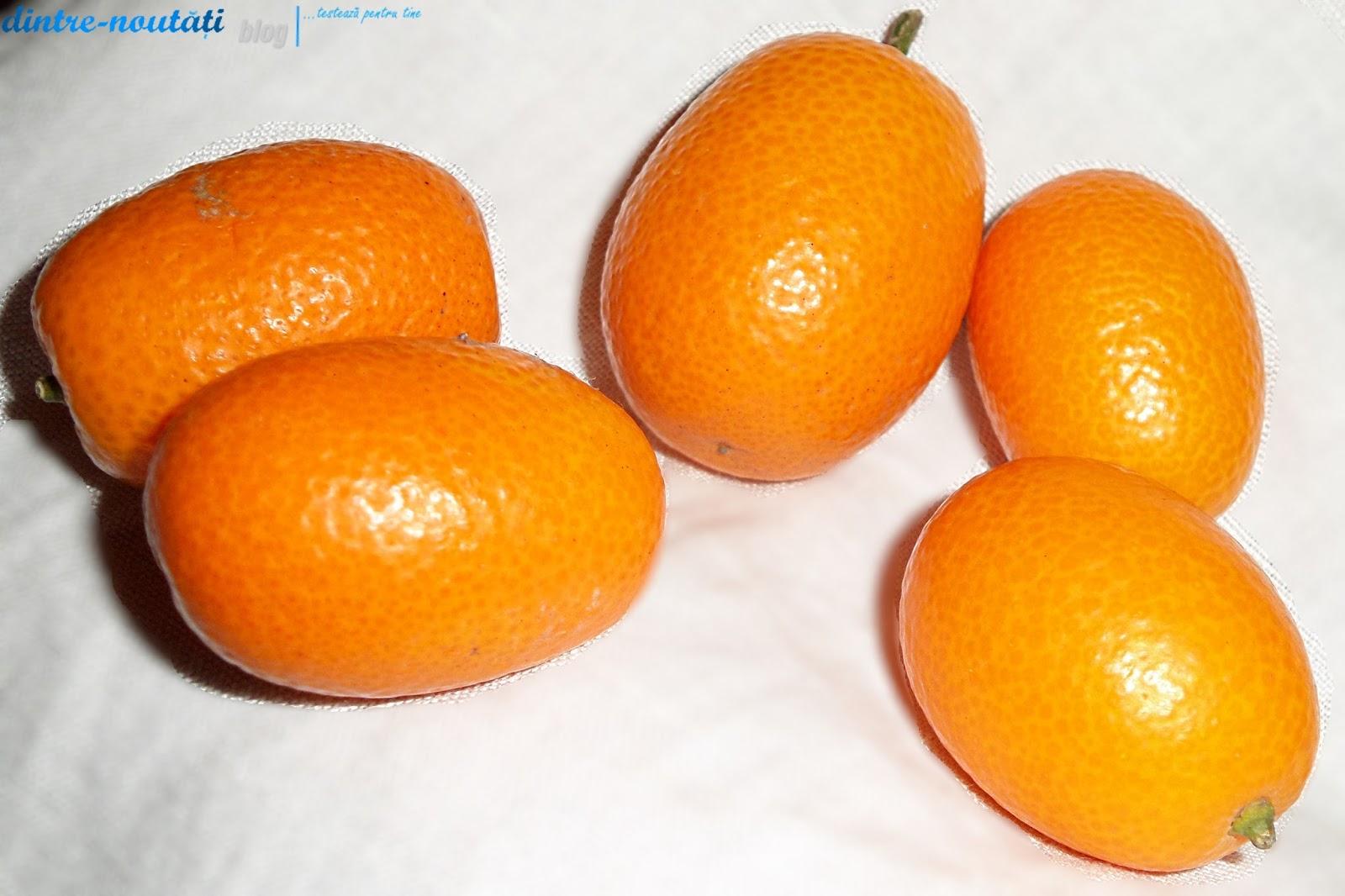 cum arată kumquat