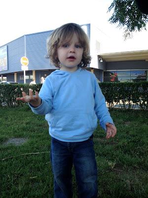 toddler blue hoodie
