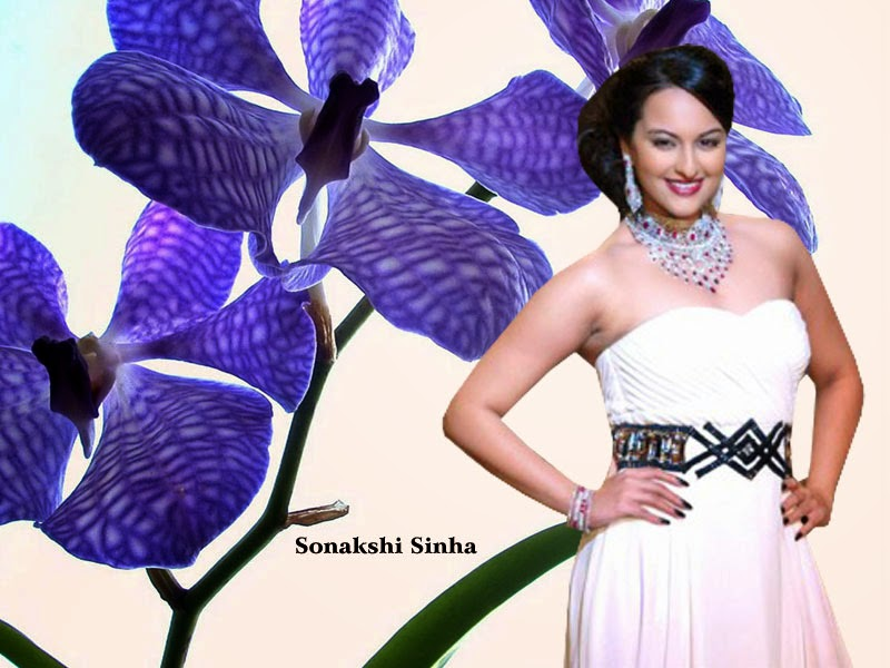 Bollywood Indian Actress Sonakshi Sinha Hot in White HD Wallpaper