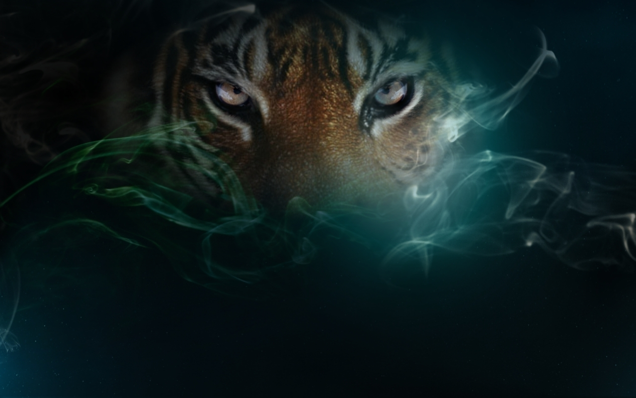 http://1.bp.blogspot.com/-VVfcPf8jL3s/Ty2J_EgdMJI/AAAAAAAADMw/g7R3y0FLaDo/s1600/wallpapers_tiger_in_mist.jpg