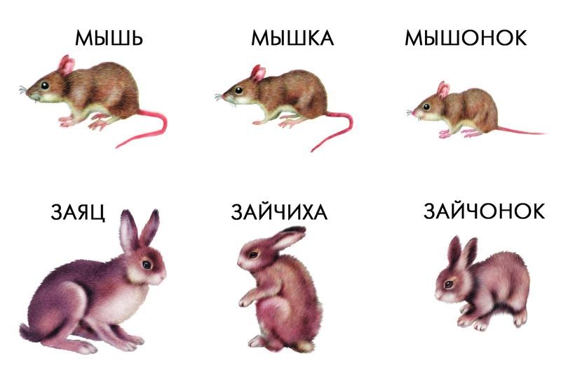 Животные и их дети поделки