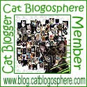 CatBlogosphere Member