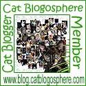 CatBlogosphere Member