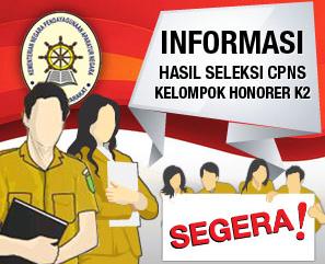 Pengumuman Kelulusan CPNS Honorer K2 27 Desember 2014