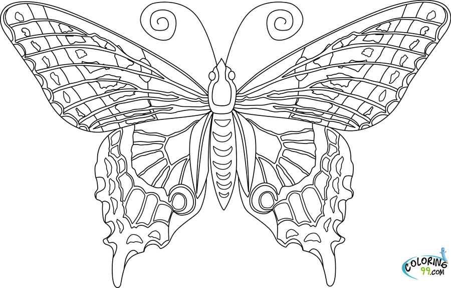 coloring pages detailed butterfly - photo#15