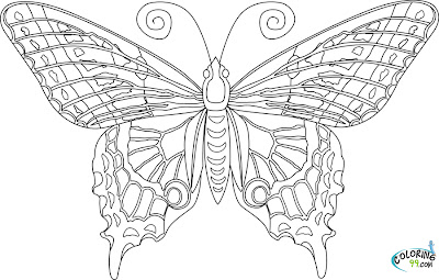 Free Adult Coloring Pages Butterflies