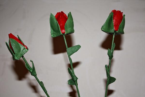 Rosas con cartones de huevos - Giovanni, Linnea, Rebecca y Madeirinha - Official Website - BenjaminMadeira