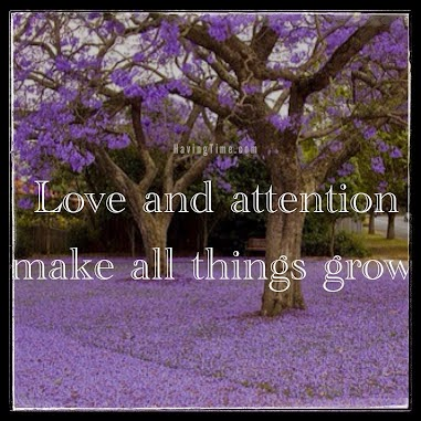 """Love and attention make all things grow."" HavingTime.com picture of a tree with lavendar blooms"
