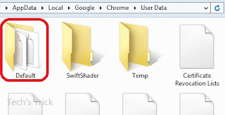 google chrome default folder holds all settings
