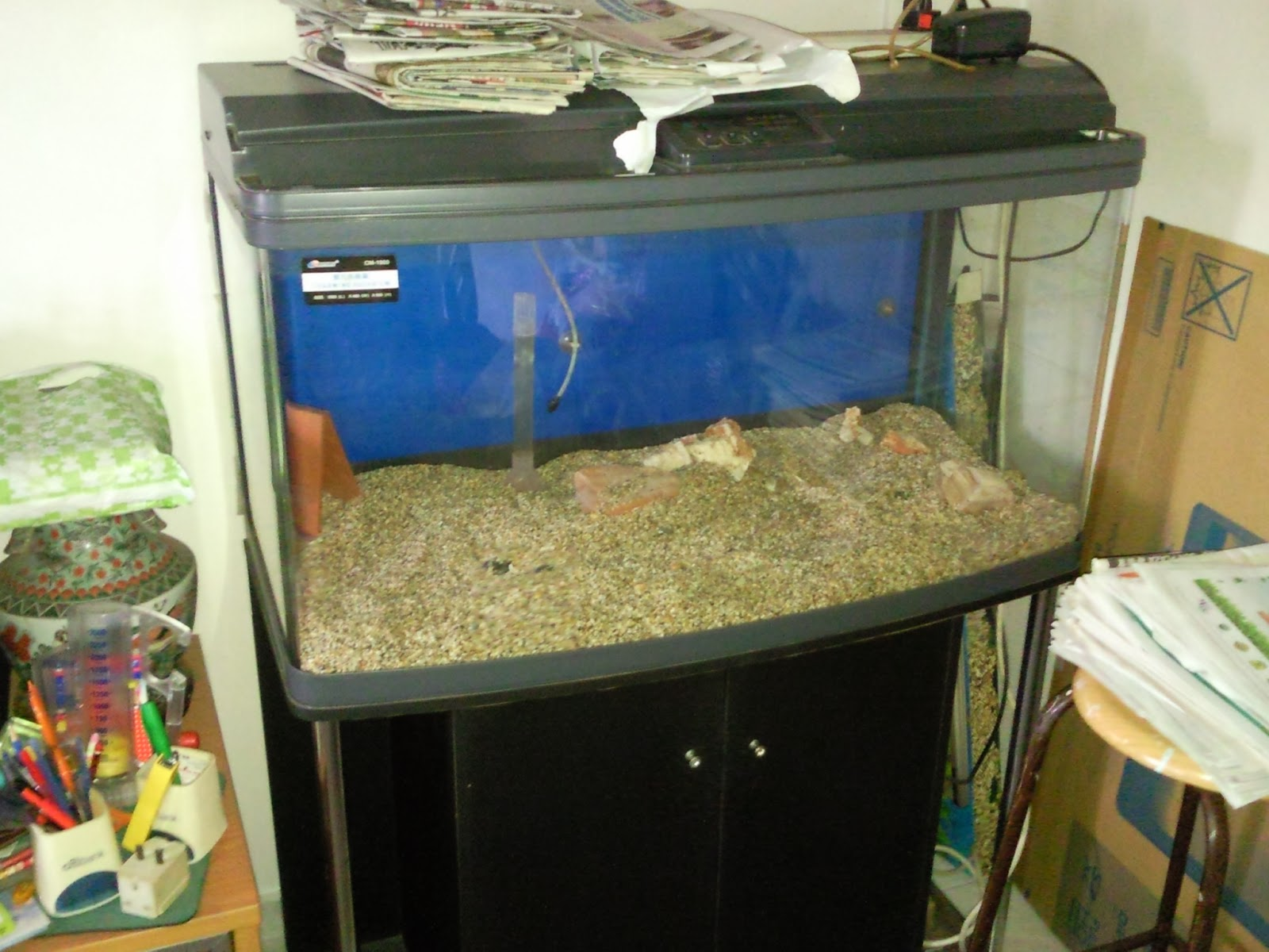 Used fish tanks for autos weblog for Used fish tank