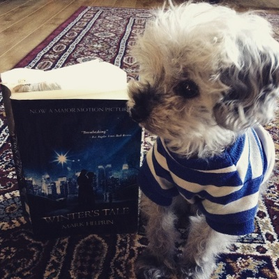 Murchie sits next to a trade paperback copy of Winter's Tale. He wears a blue and white striped t-shirt and has his head turned so he appears almost in profile. The book's cover features a photograph of two people standing beneath a deep blue, star-studded sky. New York City appears behind them, brilliantly lit.