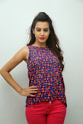 diksha panth sizzling photo shoot-thumbnail-20