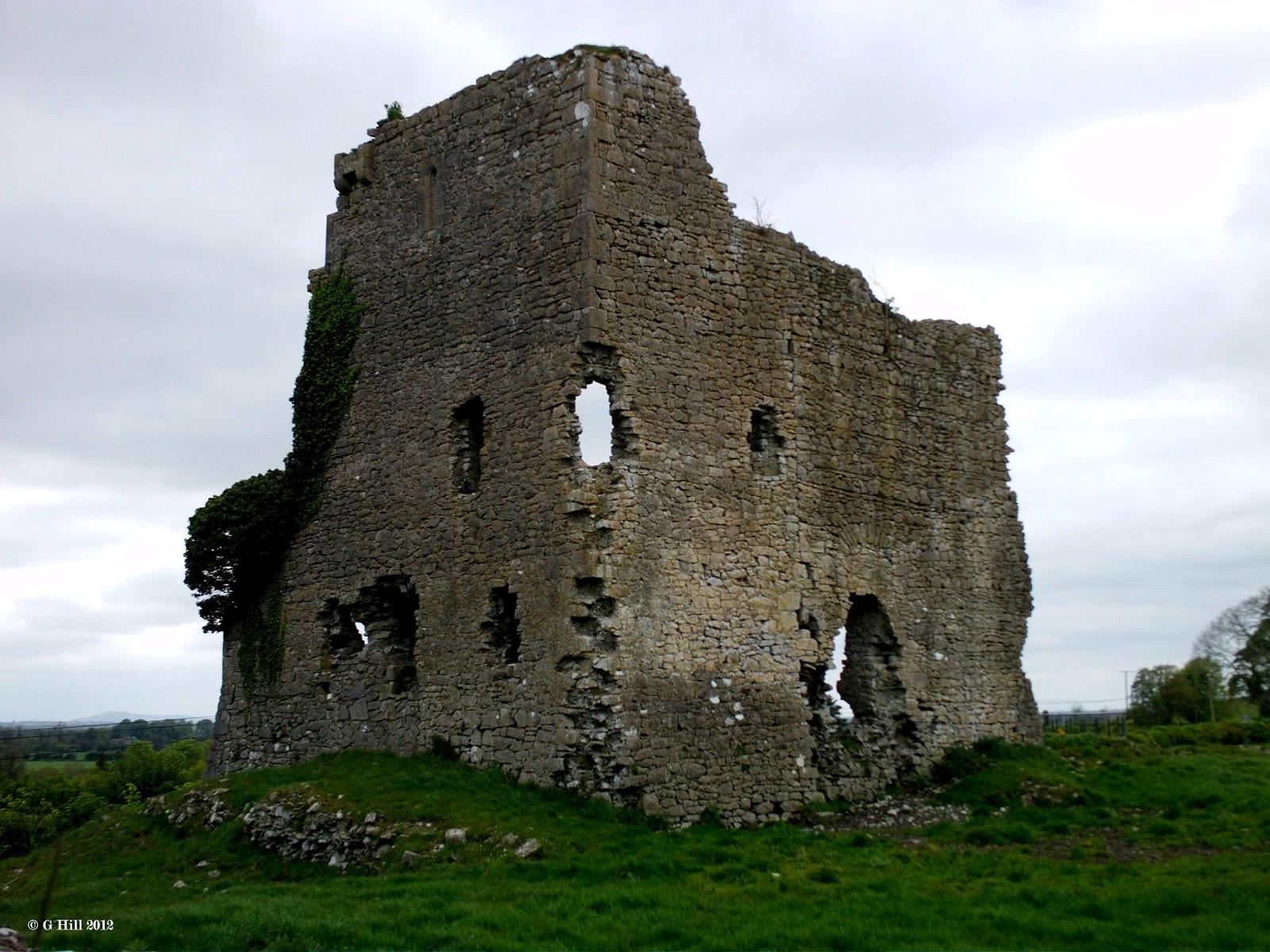 Ireland in ruins carrick castle co kildare for Kildare castle