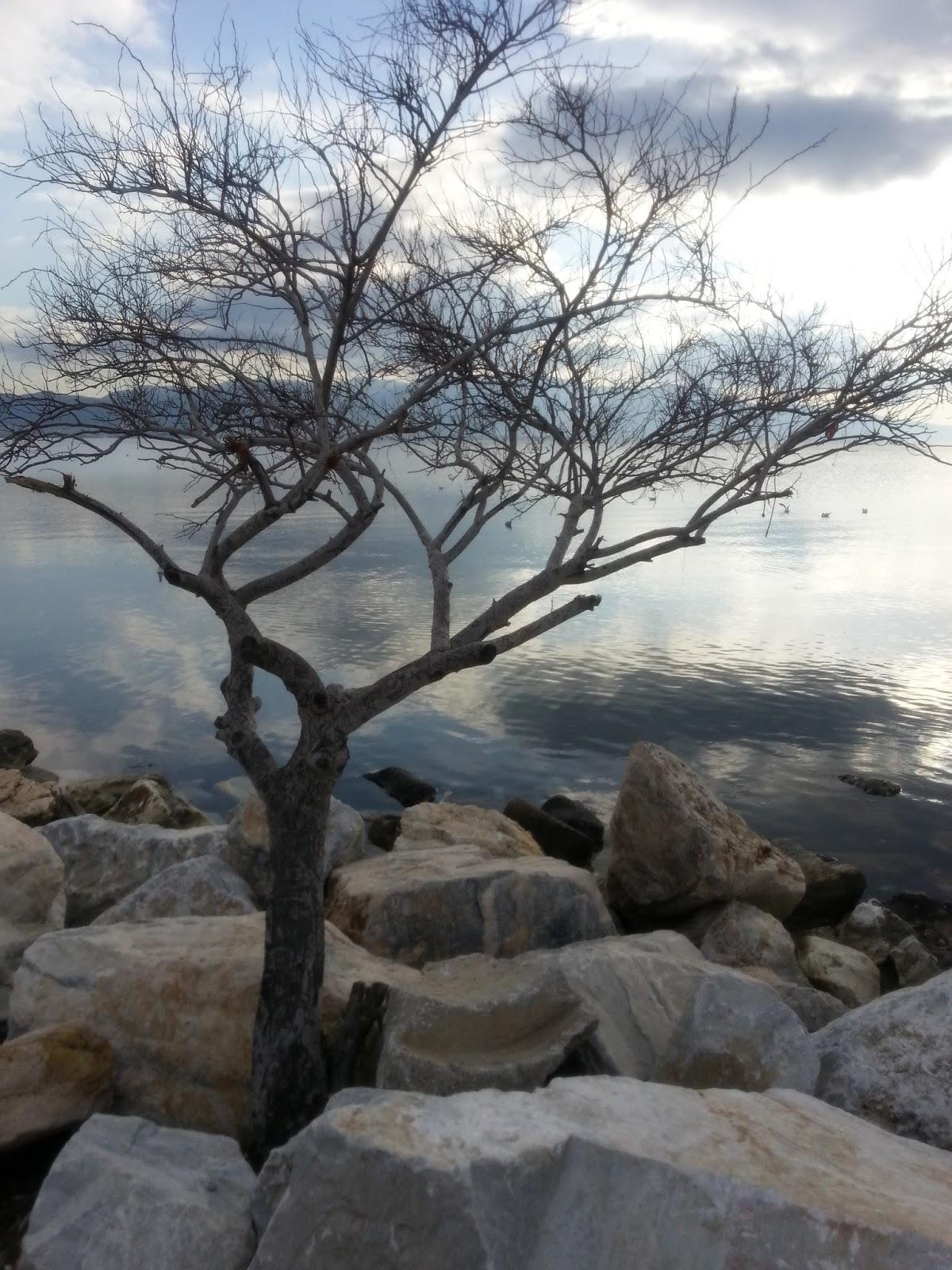 Sevgililer günü ve İzmir