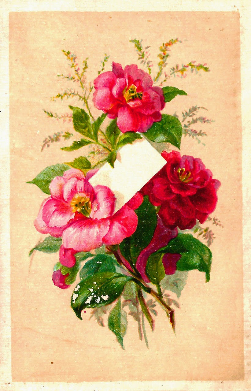 http://1.bp.blogspot.com/-VXItONc7S_k/VLgbhftsD5I/AAAAAAAAVGA/it4m3T3sU9k/s1600/rose_scrap_card_red_pink-2.jpg