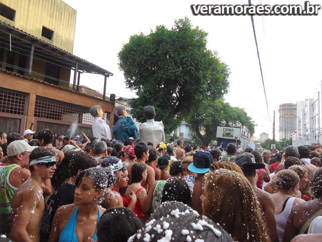 Banda do Botafogo - Carnabanda 2013