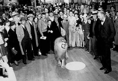 leones de la Metro Goldwyn Mayer