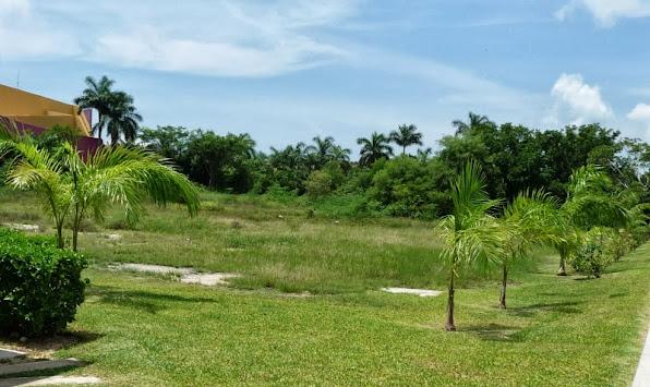 terreno parque antes