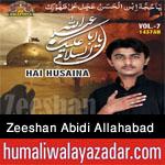 http://www.humaliwalayazadar.com/2015/10/zeeshan-abidi-allahabad-nohay-2016.html