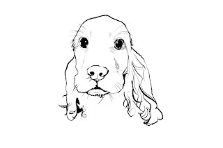 Desenho como desenhar Cachorro Lindo pintar e colorir