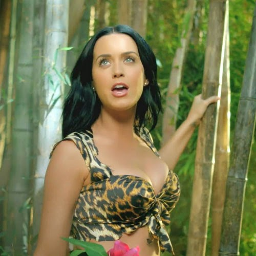12. Katy Perry