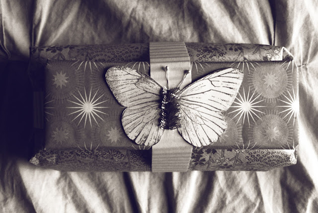 photo friday: symmetry, package, present, butterfly