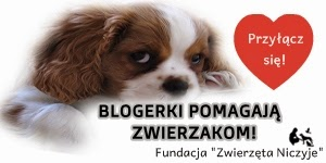 Akcja blogerki pomagają zwierzakom !