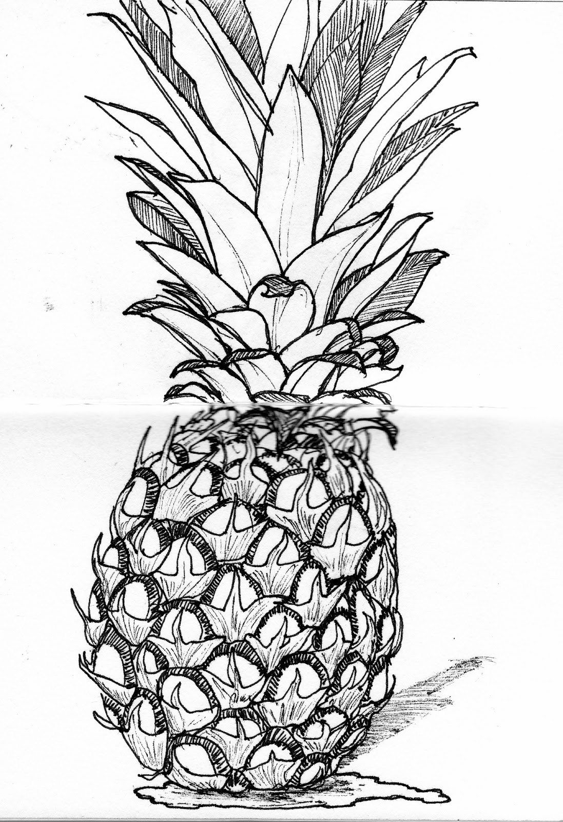 Pineapple Drawing For Kids Drawing of pineapple cakePineapple Drawing For Kids
