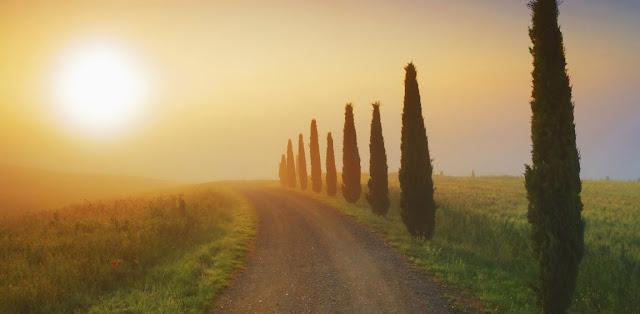 Usucapion y Derecho romano