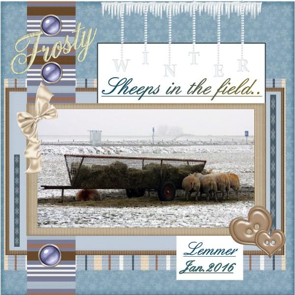 Jan.2016 – Winter Lemmer Sheeps...
