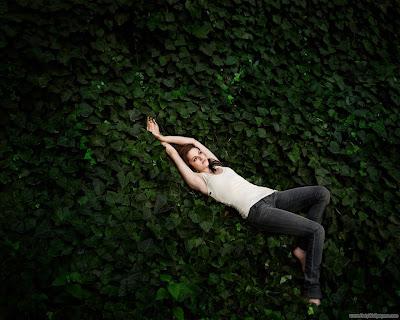 Kristen Stewart Movie Yellow Handkerchief Actress Wallpaper