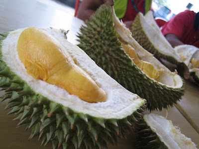 Beondegi, Bizarre Foods, Cambodia, Durian, Fish Head Curry, Food, Food Trip, Fugu, Hong Kong, Indonesia, Malaysia, Singapore, Smelly Tofu, South Korea, Thailand, Travel ASIA, Vietnam,