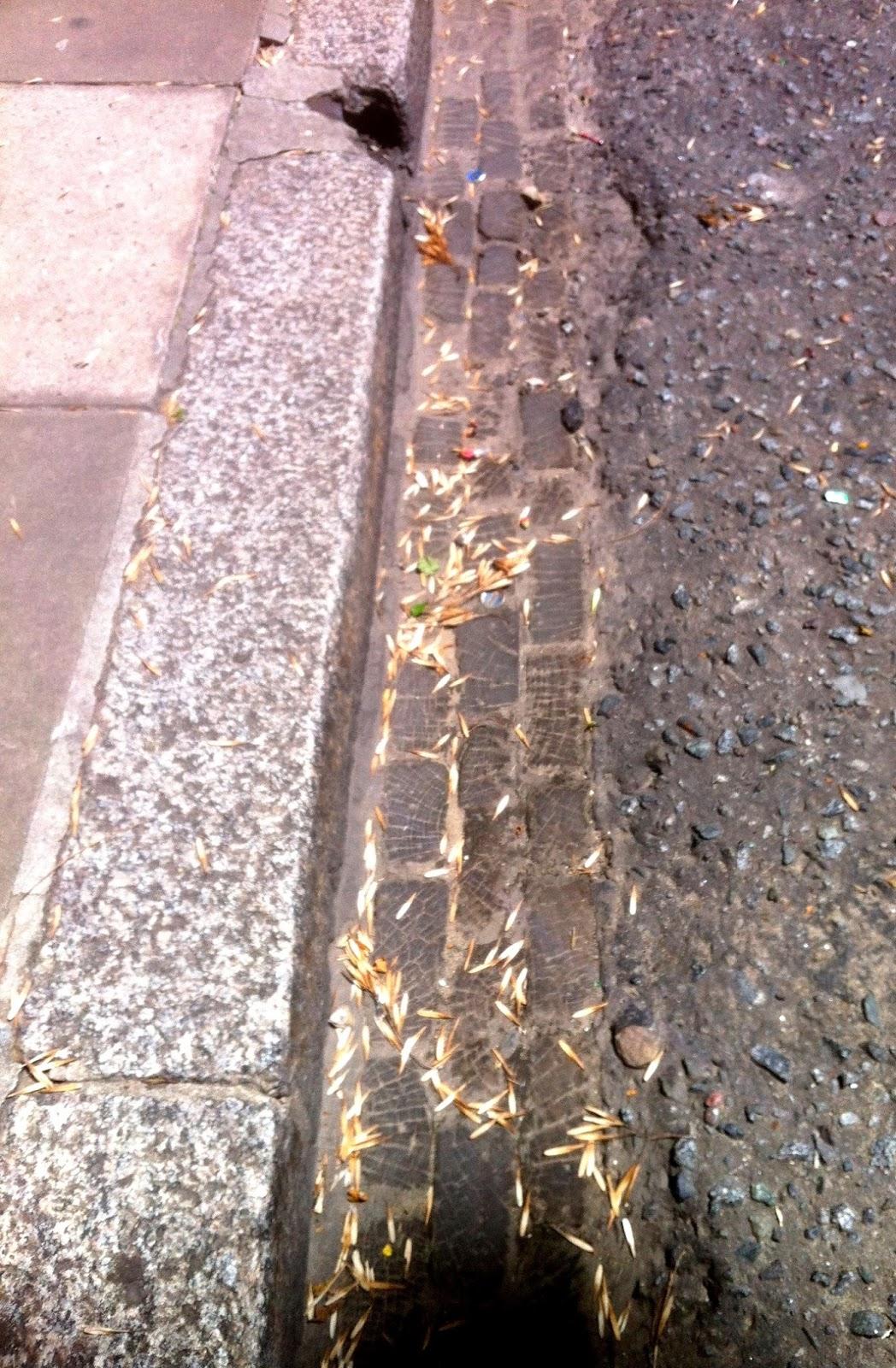 Chapati road no todo fue de piedra for Adoquines de granito