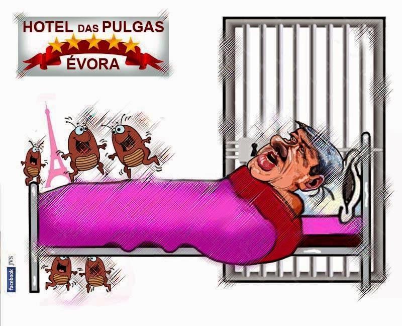 Hotel das Pulgas