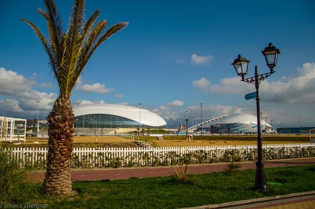 Олимпийские стадионы Сочи