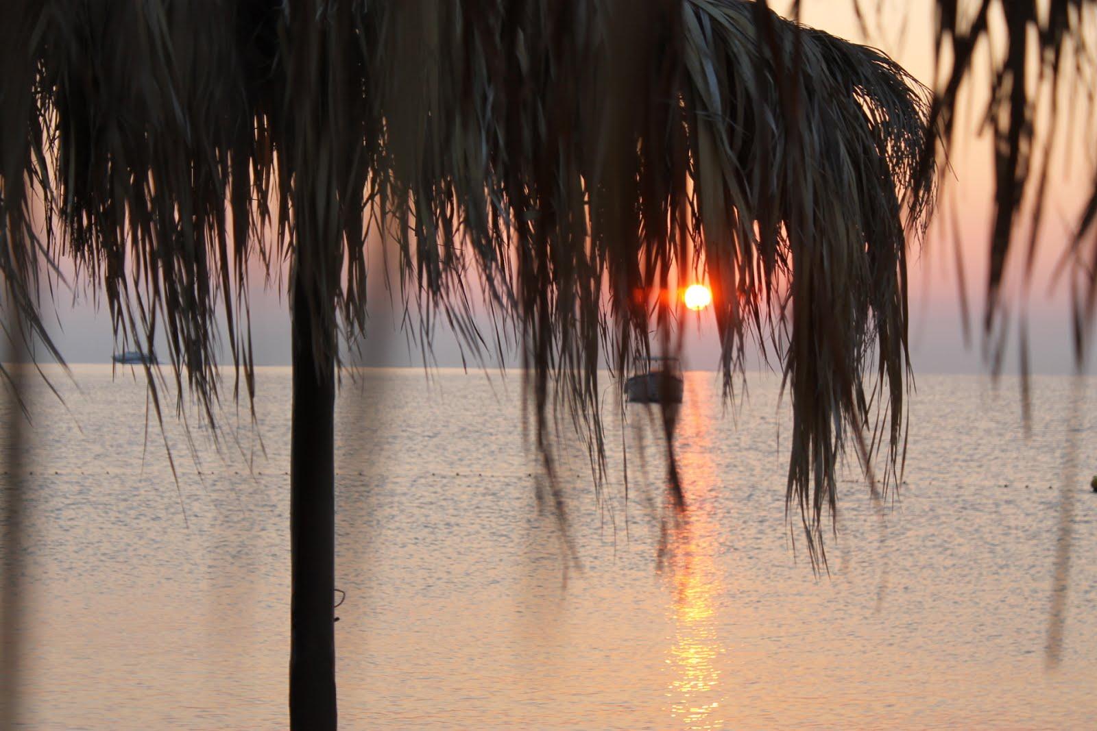 Riparandosi dai primi raggi del sole