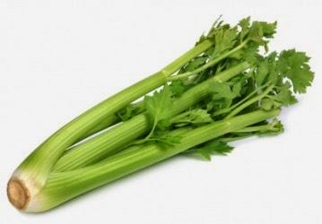 batang saderi@celery