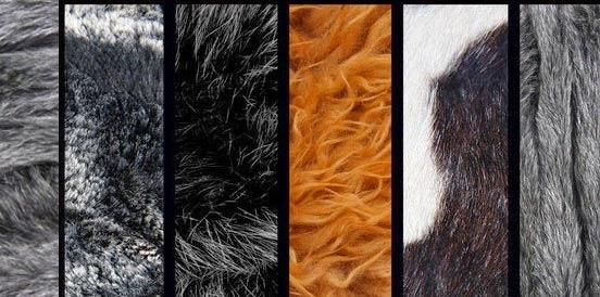 20 Sets of Free Fur and Hair Photoshop Brushes