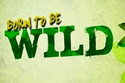 Born To Be Wild April 19 2015
