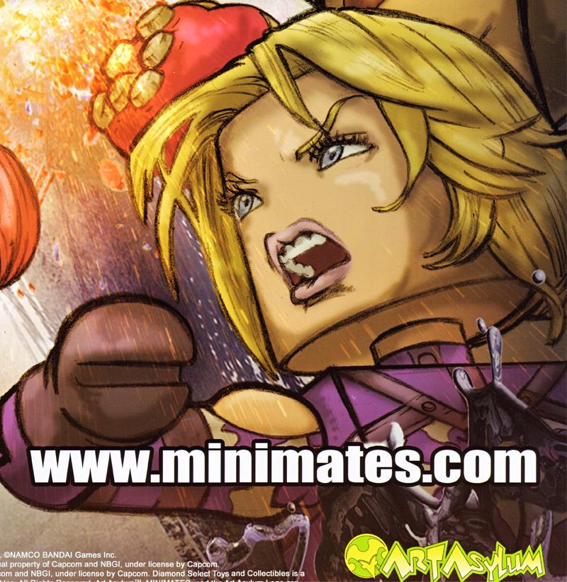 SDCC Poster Street Fighter Tekken