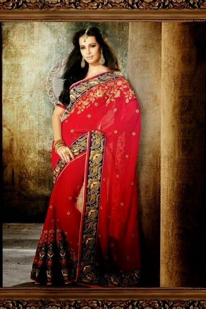 New Indian Designer Sari Fashion