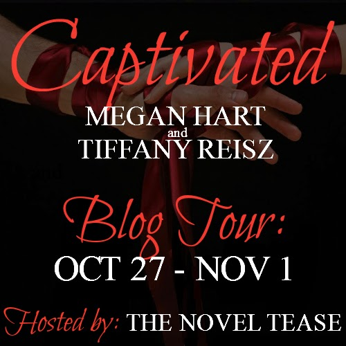 http://thenoveltease.com/blog-tours/captivated-feat-tiffany-reisz/