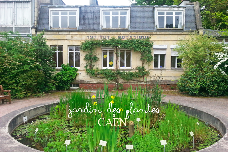 animation de juillet au jardin des plantes de caen - Jardin Des Plantes Caen