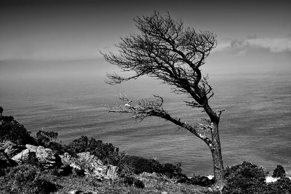 Fotograf a creativa art stica en blanco y negro por munimara fotograf as de paisajes en blanco - Fotos en blanco ...